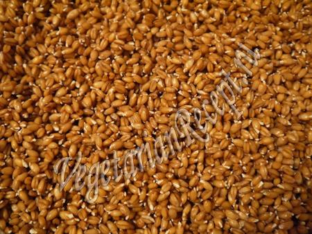 пророщенная пшеница для лепешек