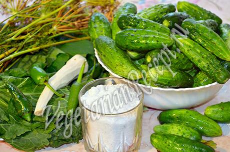 продукты для засолки огурцов