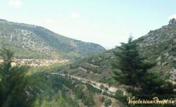 Кипр, Пендадахтилос