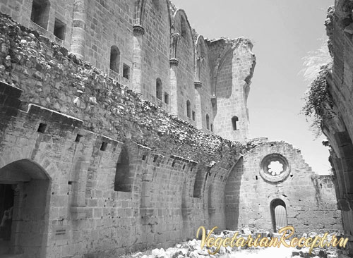 стены разрушенного монастыря