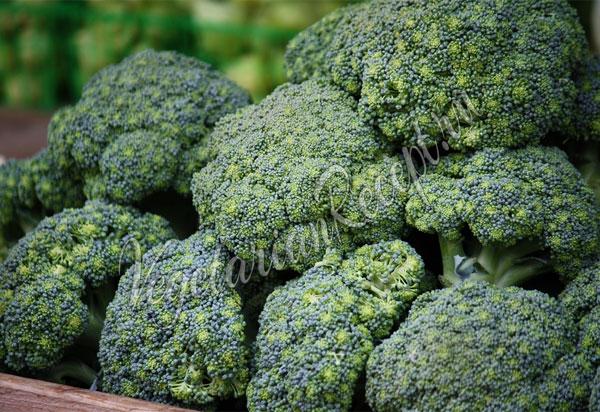 Заморозка овощей - как заморозить брокколи