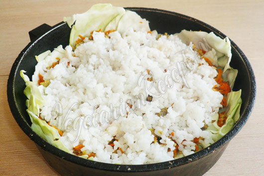 Слой из риса